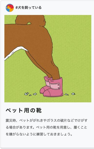 防災ダイバーシティ 犬 靴