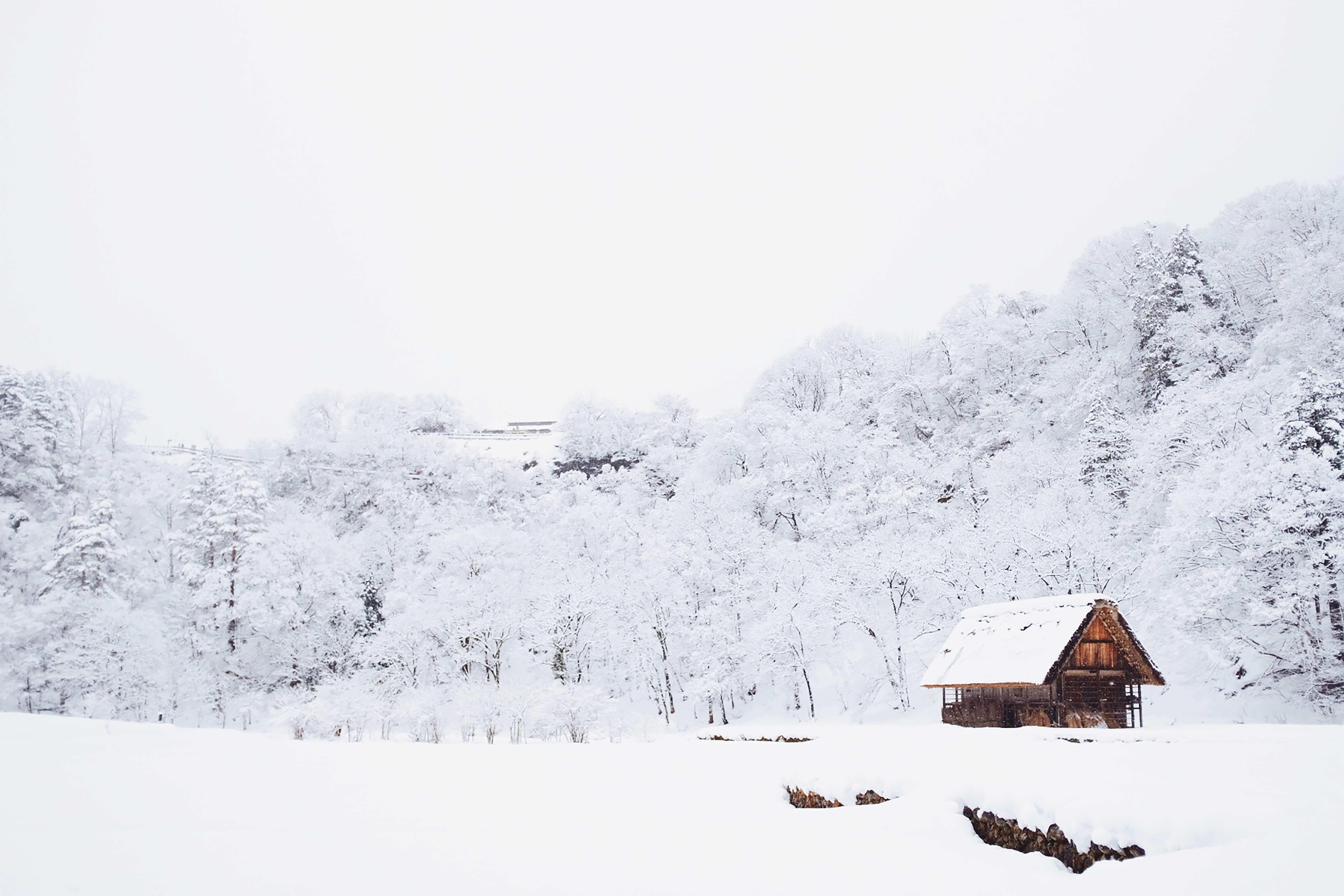 大雪 対策 家